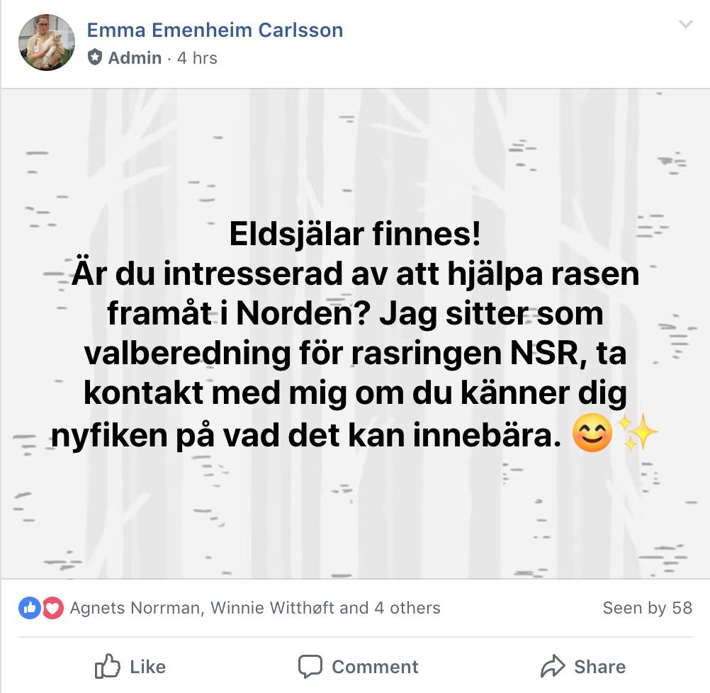 Skärmdump på facebook-inlägg gällande Nordic Selkirk Rex